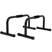 Hastings Parallettes Bar Set