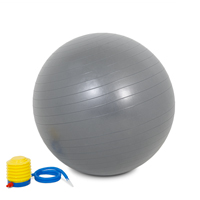 PowerMark Gym Ball 65cm