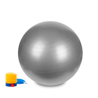 Hastings Gym Ball 55cm Silver
