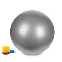 Hastings Gym Ball 65cm Argento