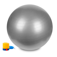 Hastings Gym Ball 75cm Argento