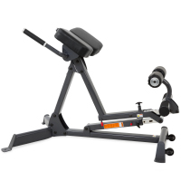 Inspire Hyperextension Bench