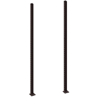 2x Pivot Fitness PM101-325 Posts 325cm
